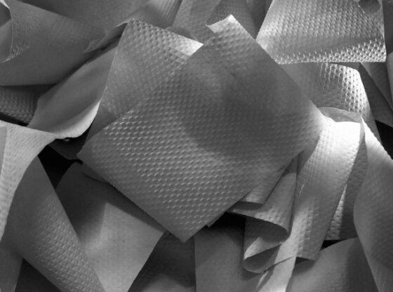 szary papier toaletowy
